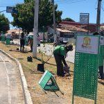 AMMA dá continuidade ao projeto de arborização de Eusébio